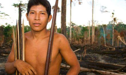 La tribu Awa de Amazonia esta en riesgo de desaparecer