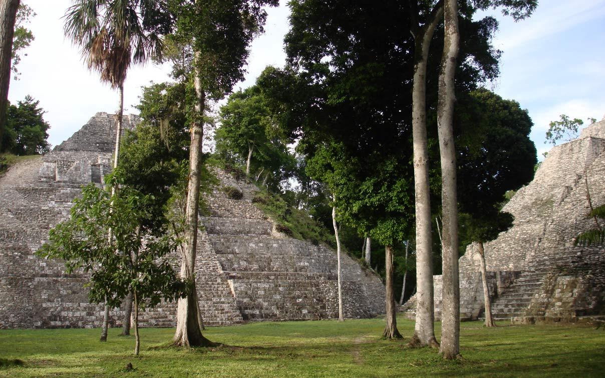 La jungle de El Petén a recouvert la culture Maya au Guatemala.
