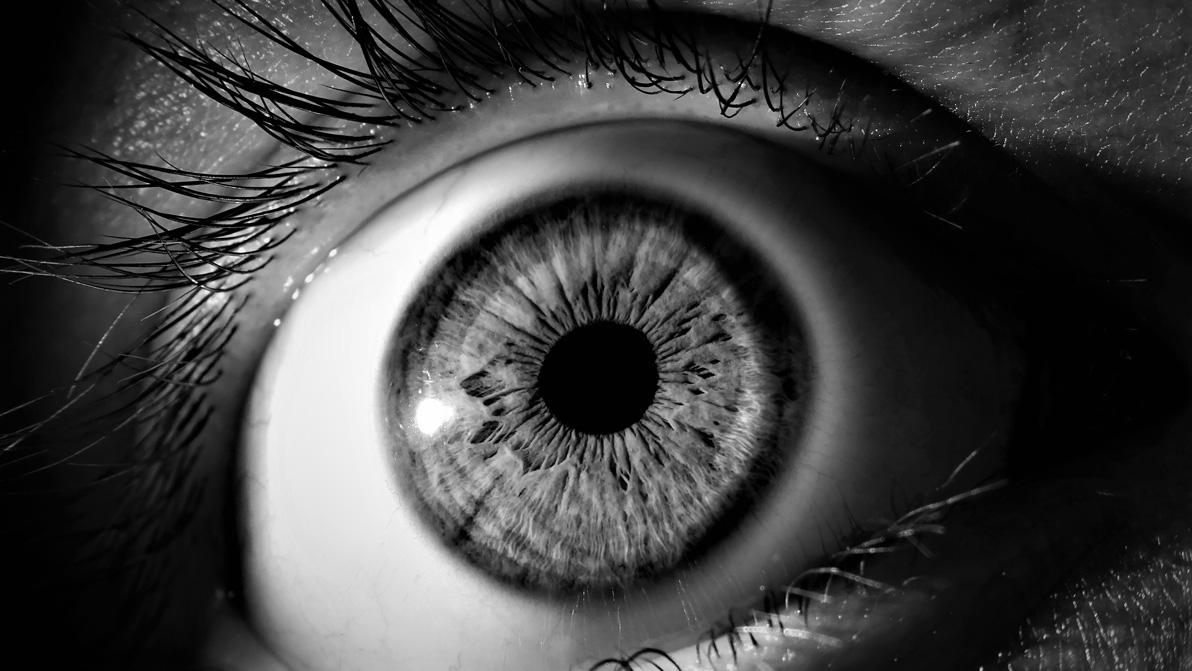 Cada persona ve lo que ve.