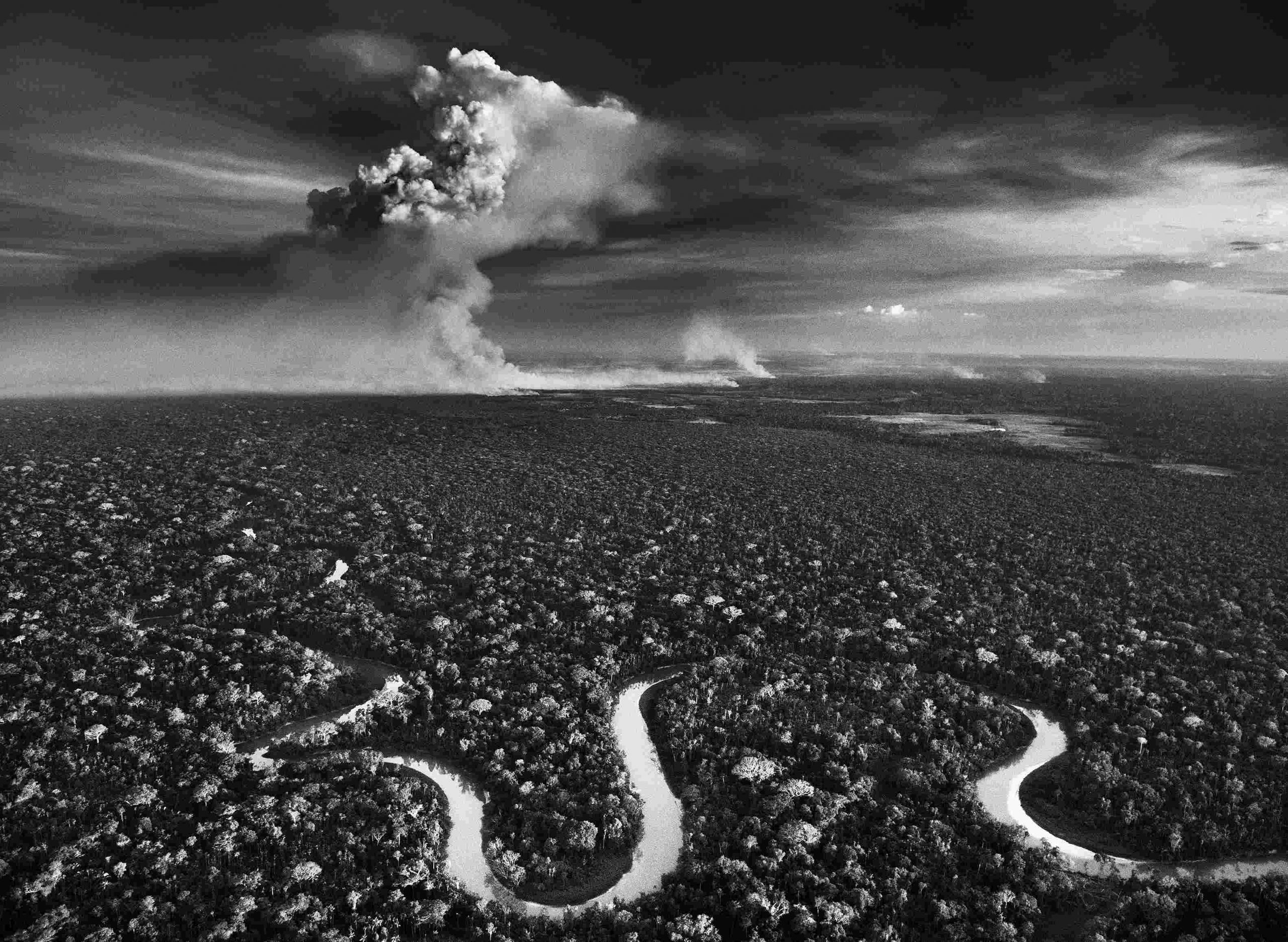 La Amazonía: Exposición de Sebastião Salgado en el espacio Frans Krajcberg